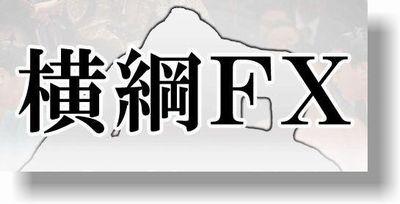 横綱FX販売ページ