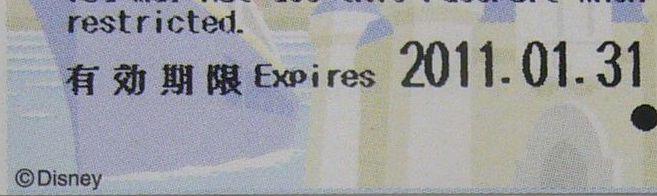 ディズニーチケット日付